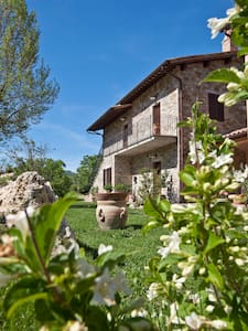Relais Parco  Subasio 2/4- S Person - Assisi - Apartment