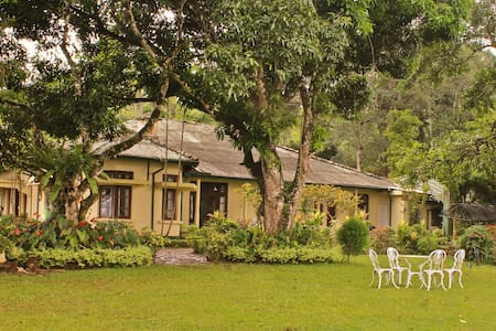 Ancoombra Tea Estate Bungalow - Kandy