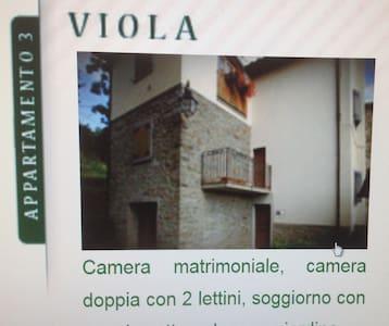 La viola in mezzo al Parco - Valagnesi