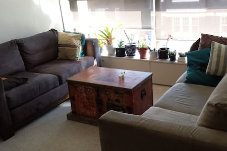 Open, light, central. Great value. - Potts Point - Apartment