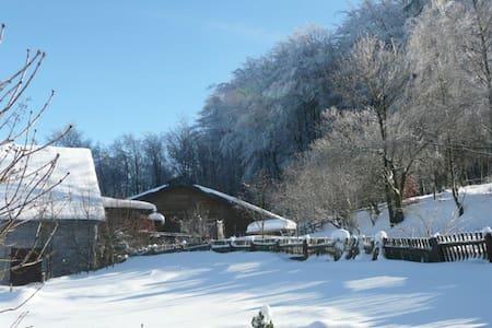 Ferien auf dem Bauernhof - Kierspe - Appartement