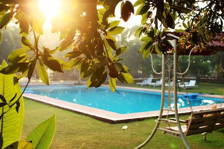 Organic Farm & Resort in Pushkar -1 - Pushkar  - Other