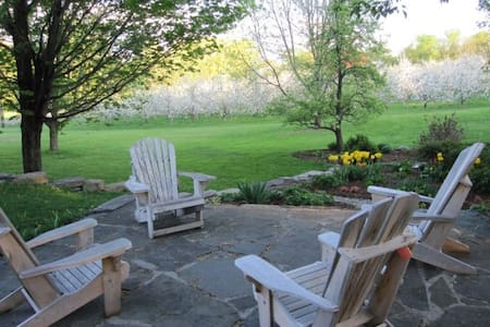 Sunrise Orchards - Twin Bedroom - Cornwall - House