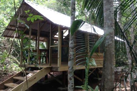 Cohune Camping Casita - Cabin