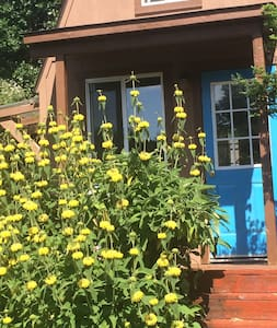 west sebastopol TINY cottage - Sebastopol - Cabin