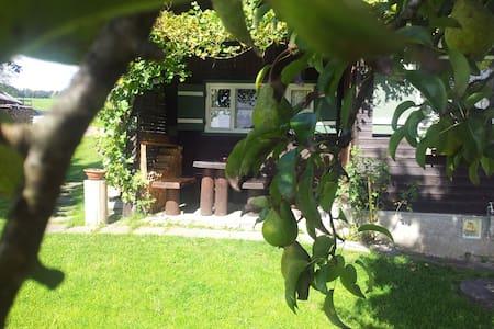 Urige Hütte Simssee-Ranch  - Söchtenau-Untershofen - Chalet