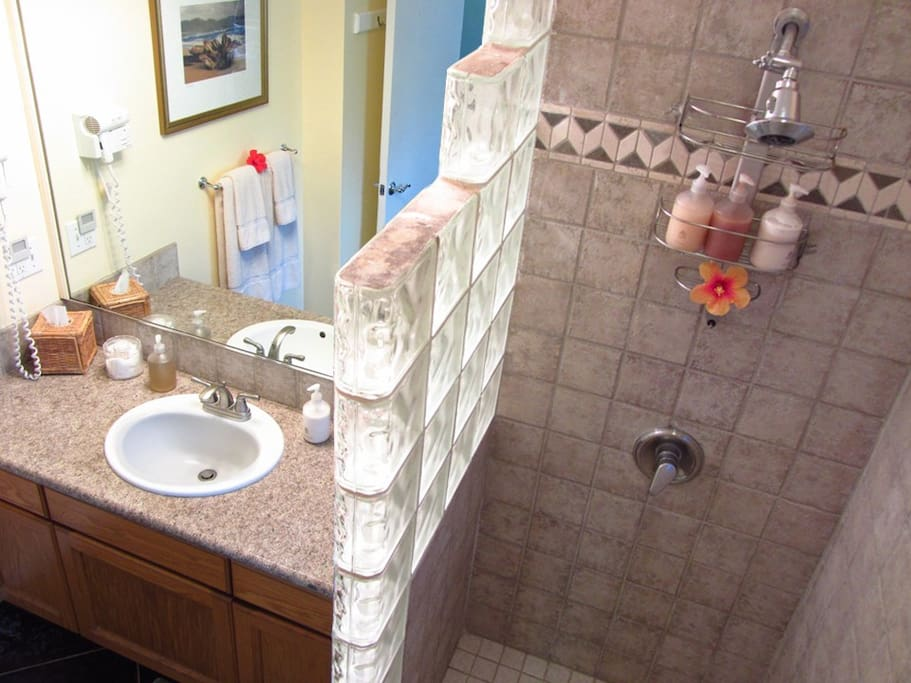 Walk in glass block shower.  Vanity with  granite counter and wall hair dryer.