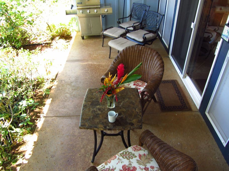 Large, private covered lanai