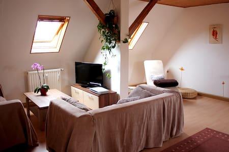Ferienwohnung am Salzsee - Bad Windsheim - Apartamento