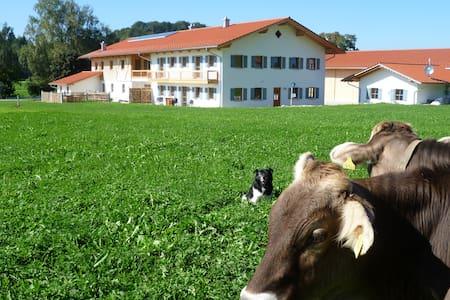 Neubauferienwohnung in Allgäuer Hof - Huoneisto