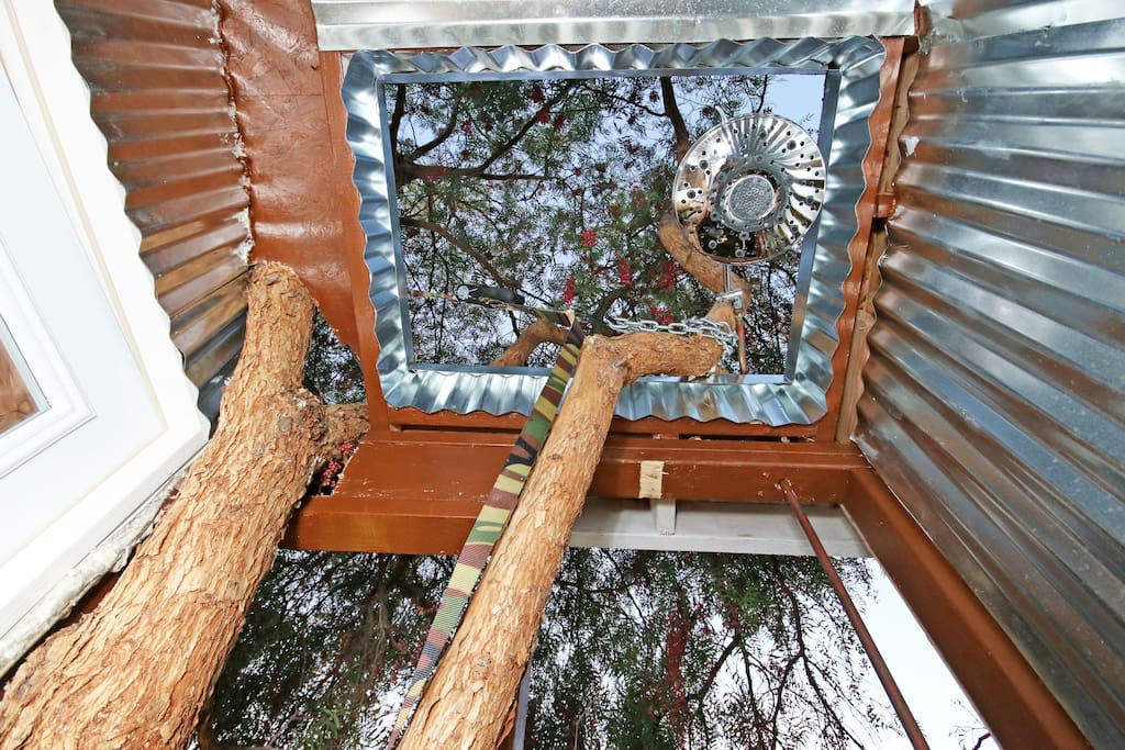 Outdoor shower with open ceiling and tree canopy