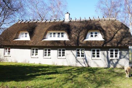 Værelse med stue og tagterrasse - Vejle - House