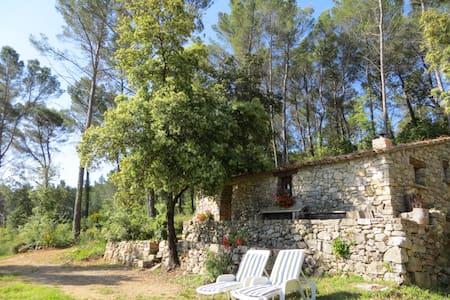 Private Stone Cottage - Lorgues