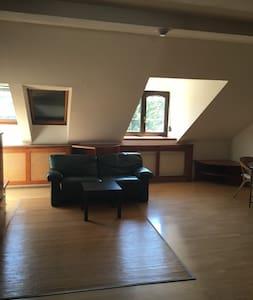 Schöne Wohnung in ruhiger Lage, freies Parken - Apartment