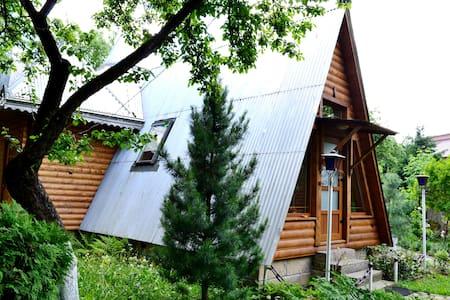 Приватна садиба У Ярослава - Yaremcha