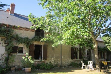 L'orée de Chambord - Saint-Laurent-Nouan