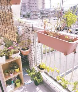 Affordable Beach Town Apartment - Apartment