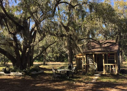 Artist's dream cabin under the oaks - House