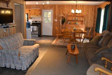 Kennisis River Cottage - Algonquin Highlands - Cabin