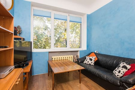 spacious cosy room in heart of city - Wohnung