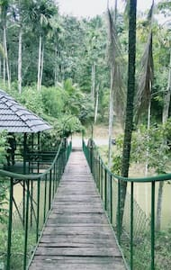 Best 3 bedroom homestay in wayanad - sulthan bathery - Appartement