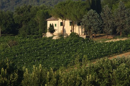 Il Vigneto - Agriturismo and B&B - Spoleto - Bed & Breakfast