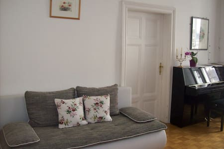 Aparment in the heart of Vienna - Wohnung