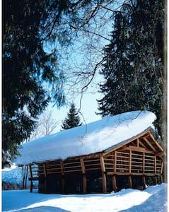 Una baita tra gli alberi - Alagna Valsesia - Cabin