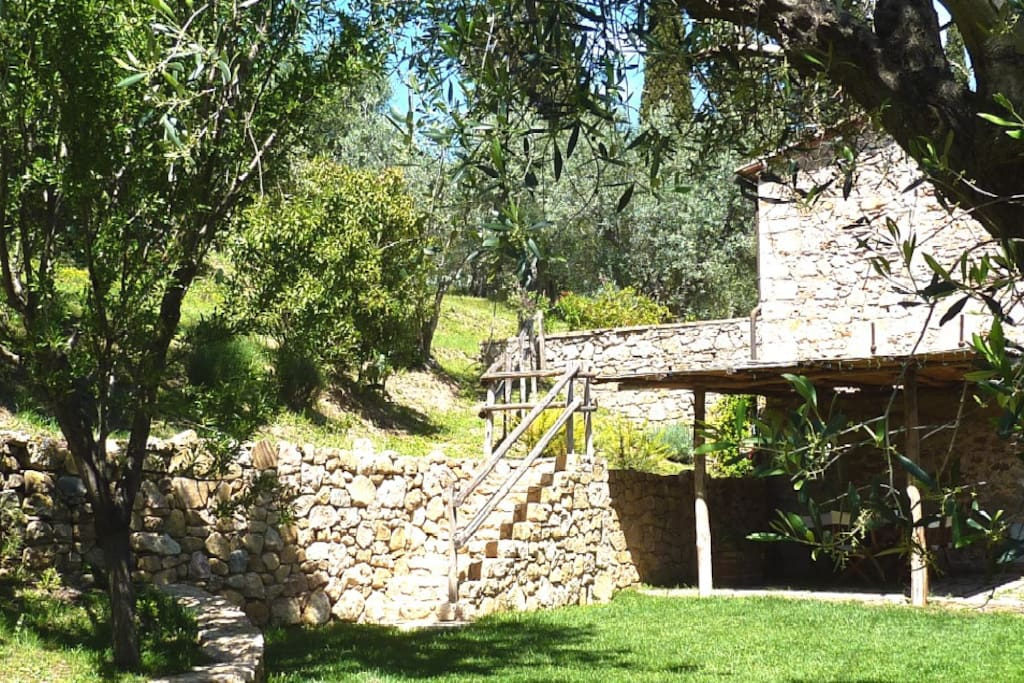 Cottage in the olive grove, 6 guest