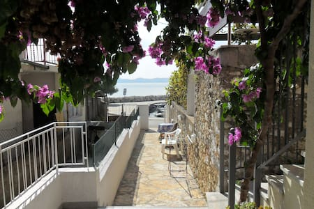 in a quiet position,across the sea  - Zadar - Apartment