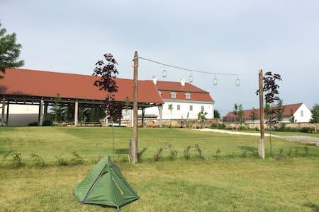 Bakonyi Camping a bagolyvarfogado kertjében - Tent