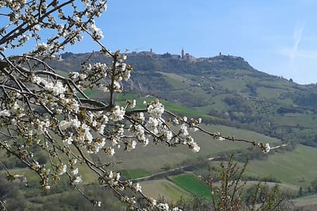 B&B il podere del nonno - Ripatransone - Bed & Breakfast