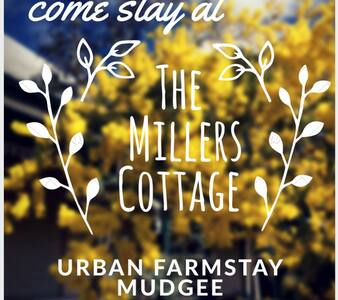 Urban Farmstay right in town, Mudgee - Mudgee - House
