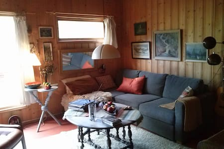 Nice cottage in forest near to Oslo - Nedre Eiker - Alpstuga