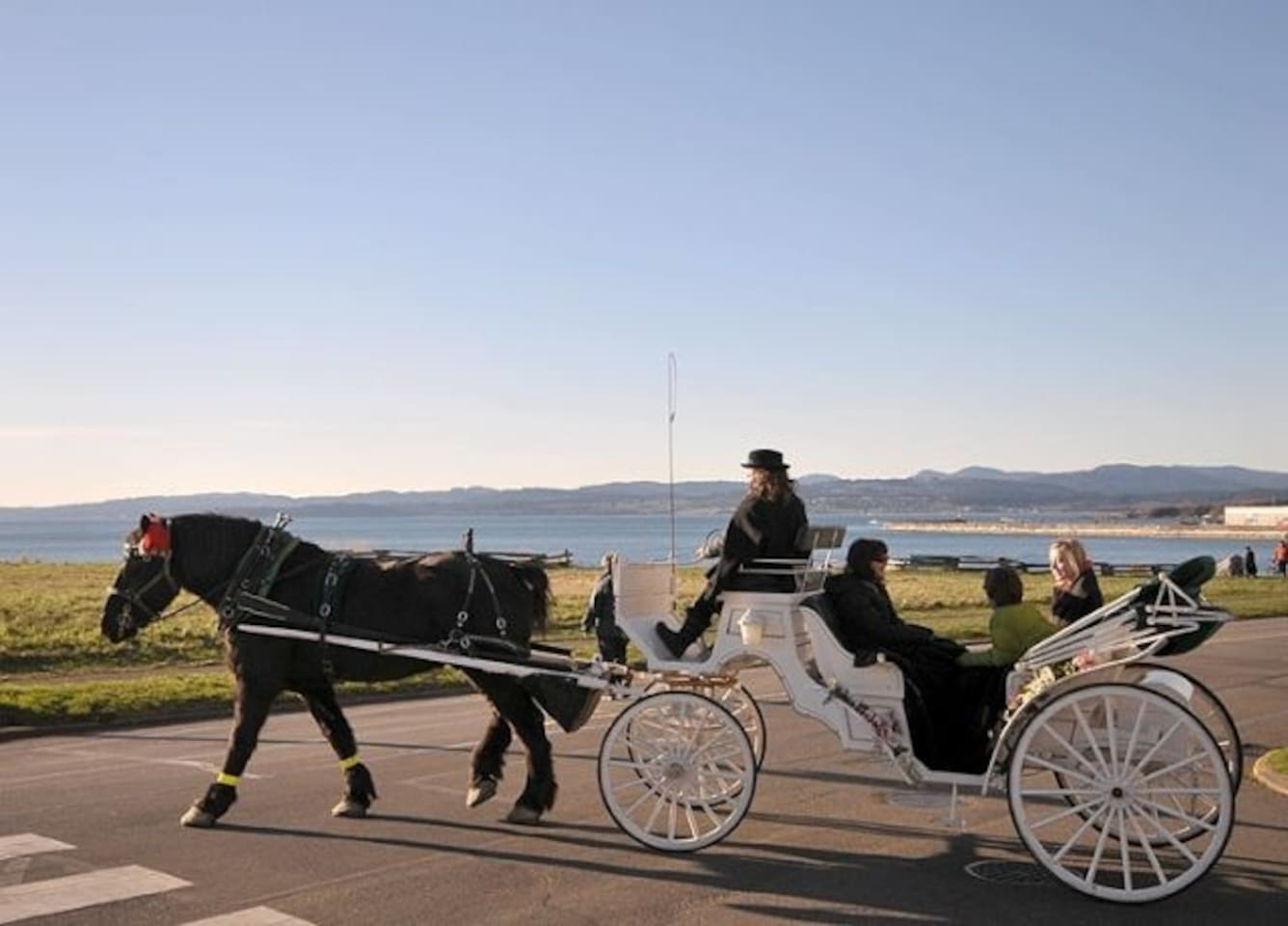 Watch Horse Drawn Carriages Pass by Our Oceanside Heritage House in Historic James Bay