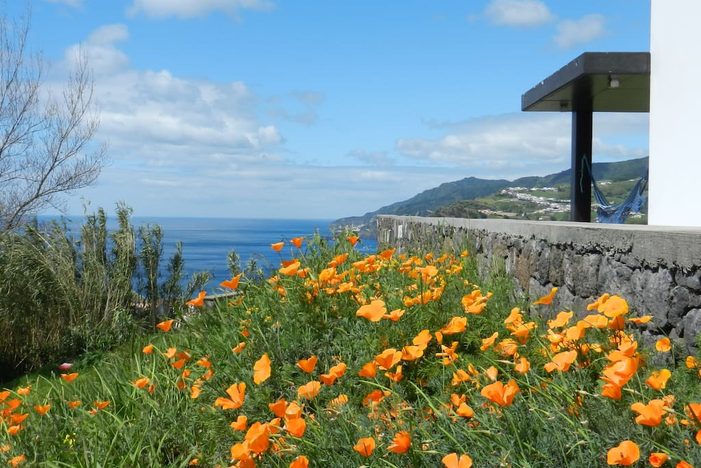 What about some sunny days in Azores?