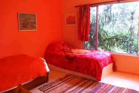 Charlotte's Retreat Twin Bedroom - Bellingen