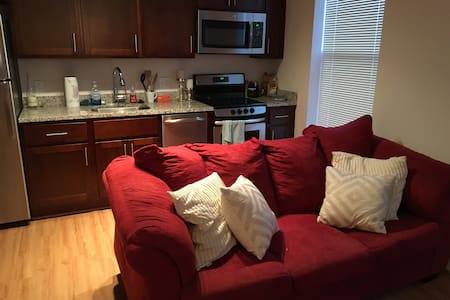 Capitol Hill Apartment near Metro - Washington - Apartment