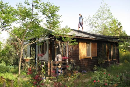 Cute wooden house for rent  - Treehouse