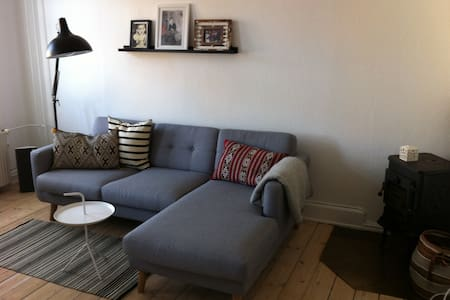 Newly renovated central apt. in Cph