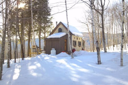 Off grid cabin with AMAZING mountain views - Andover