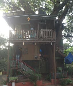 Only Tree House in Panchgani - Panchgani - Treehouse
