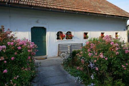 Wohnen am Bauernhof / Farm holidays - Apartament