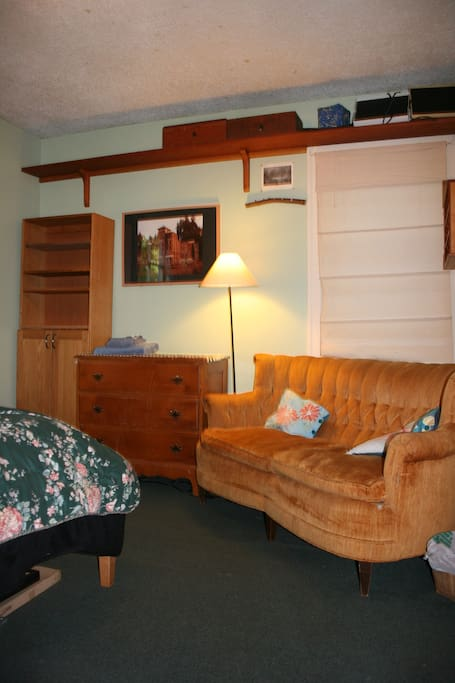 large room has lots of storage and a vintage couch