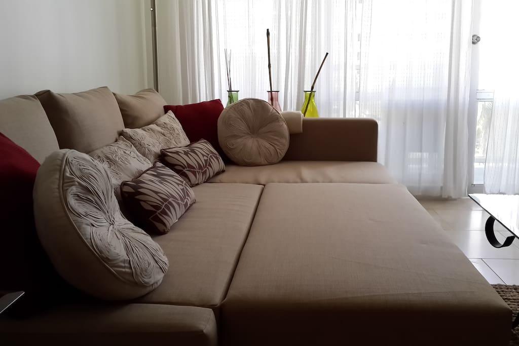 Queen Sofa Bed