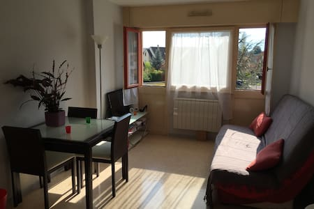 Mignon studio tout confort, tv,wifi - Illkirch-Graffenstaden