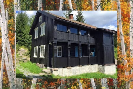 Cozy, 100 year old mountain cabin - Bø - Chalet
