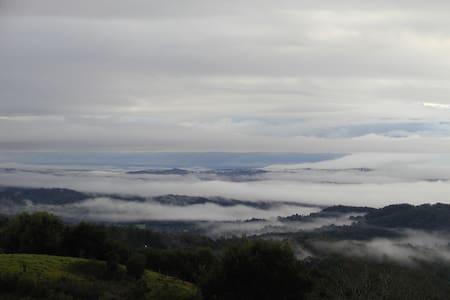 Amazing views close to Maleny - Oda + Kahvaltı