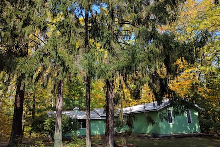 Cute Sawyer Cottage on Wooded Lot #pineafterpine - Sawyer