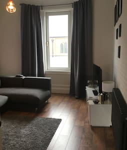 Modern big 1bd apartment w/ parking - Appartement